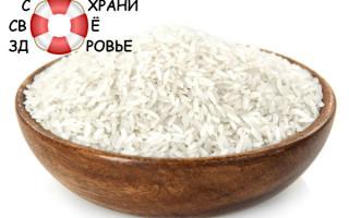 Рис — вред и польза древнего злака. Его разновидности
