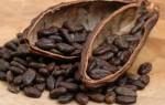 Какао. Польза и вред