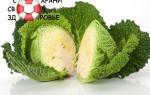 Савойская капуста: полезные свойства и противопоказания