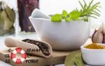 Травы для похудения — естественно и дешево