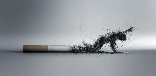 Вред курения. Картинка №1