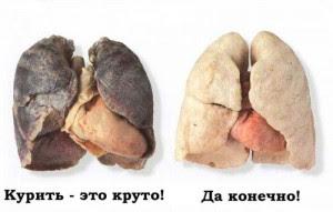 Вред курения. Картинка №8