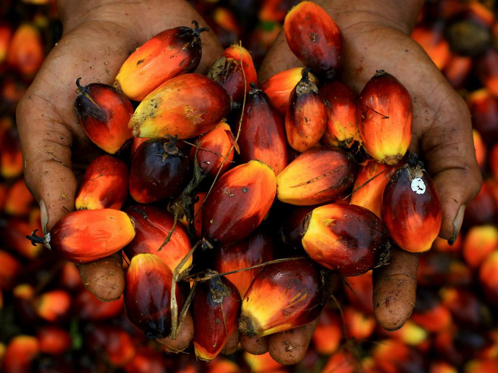 Пальмовое масло. Применение