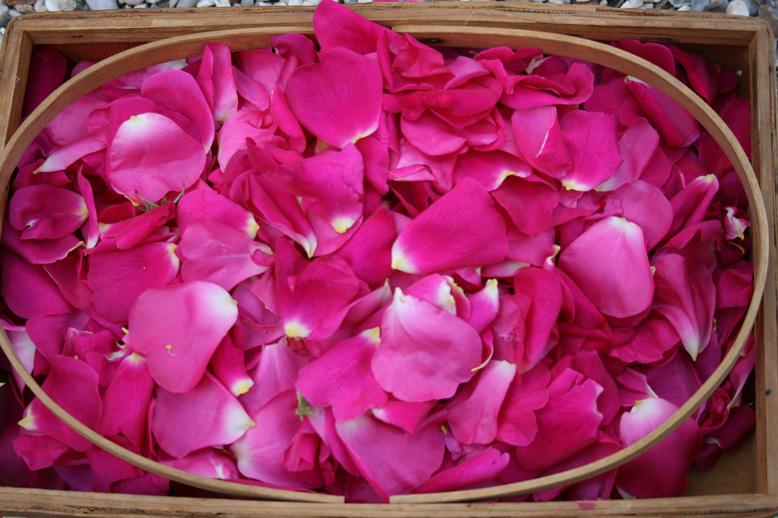 Материал для розового масла