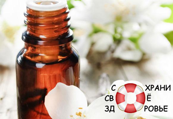 Эфирное масло жасмина. Применение и свойства