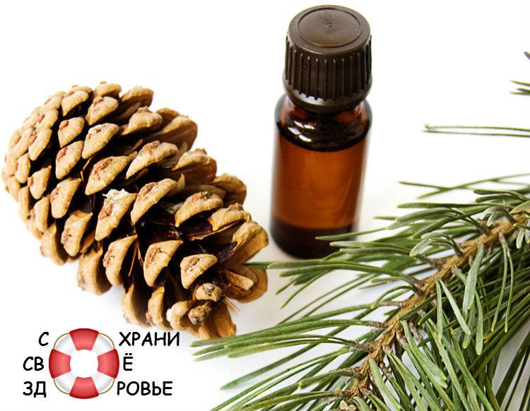Эфирное масло сосны для волос