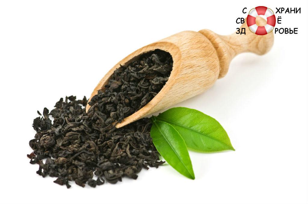 Черный и зеленый чай. Отличие