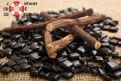 Солодка — лечебные свойства корня и сиропа лакрицы