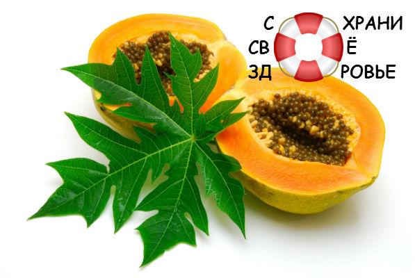 Папайя — полезные свойства необычного фрукта