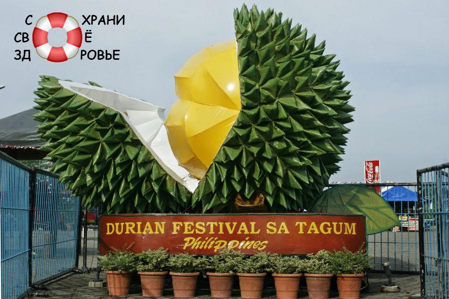 Дурианские фестивали