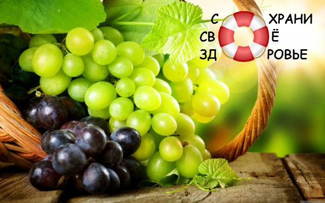 Виноград. Его польза и вред