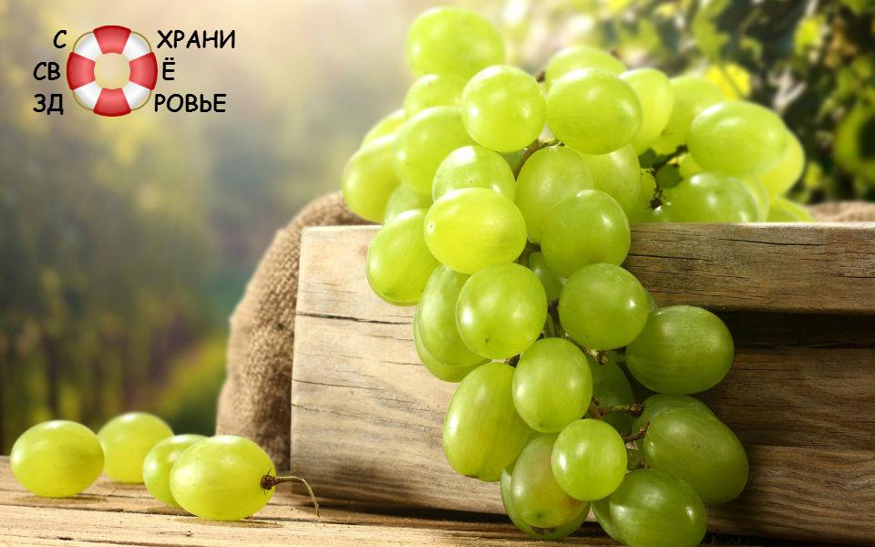 Просто красивое фото винограда