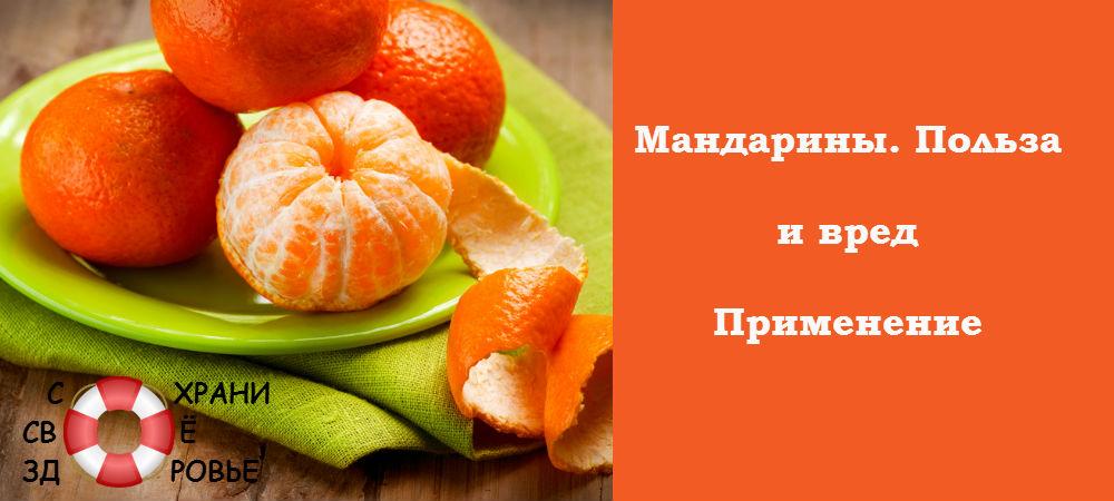 Фото мандарина