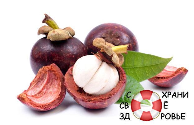 Мангостан — полезные свойства короля фруктов