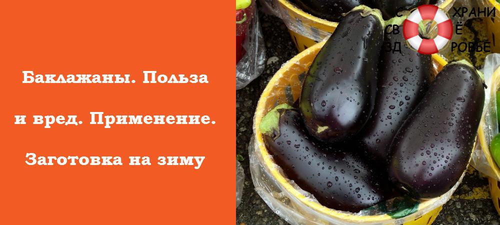 Фото баклажанов