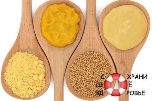 Домашняя горчица. Полезные свойства и способы приготовления