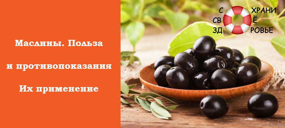 Фото маслин