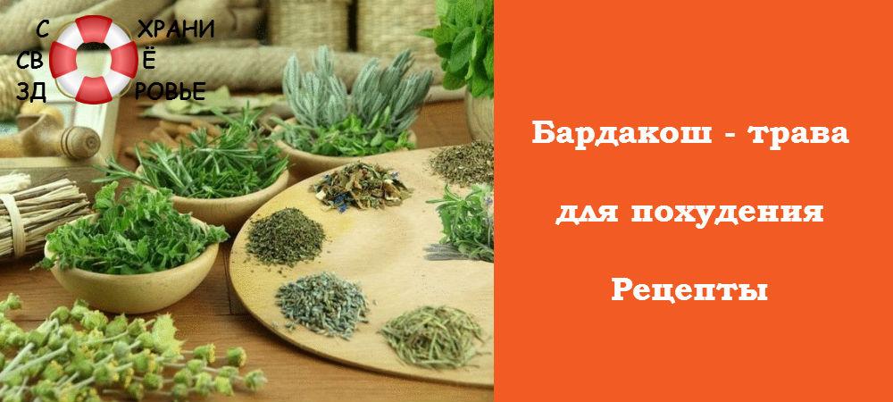 Фото бардакоша