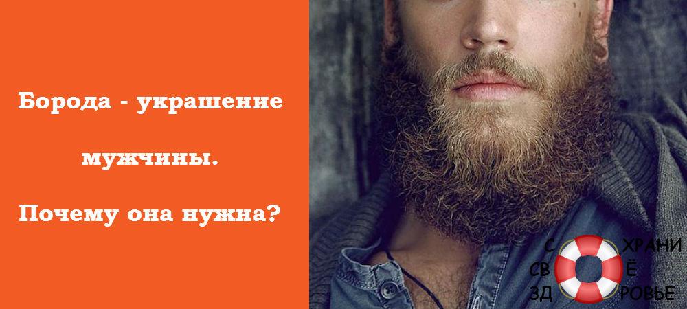 Фото бороды