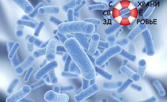 Бактерицидные лампы: нужны ли и как выбрать?