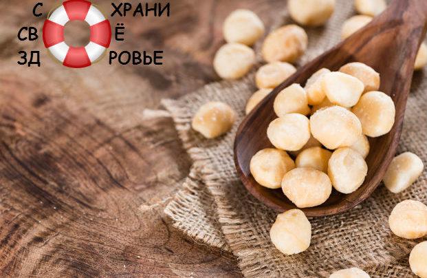 Масло макадамии: свойства и применение