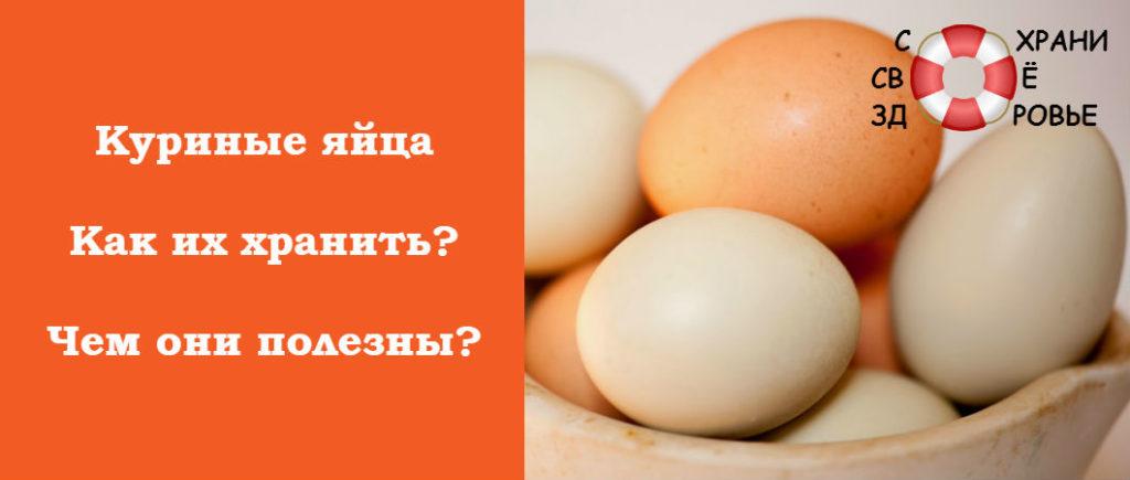 Куриные яйца: фото