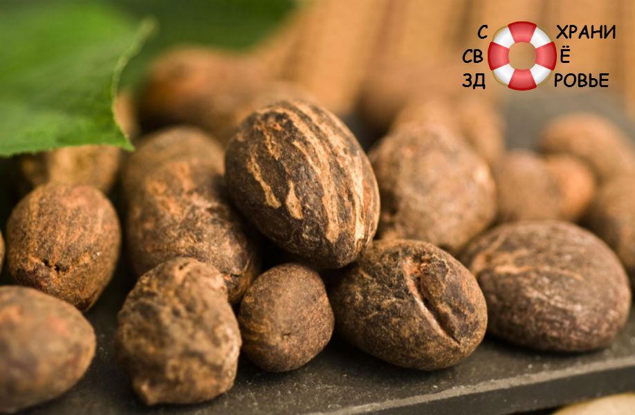 Орехи карите