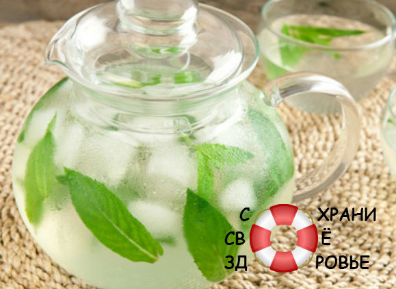 Чай из мяты лечебные свойства и противопоказания