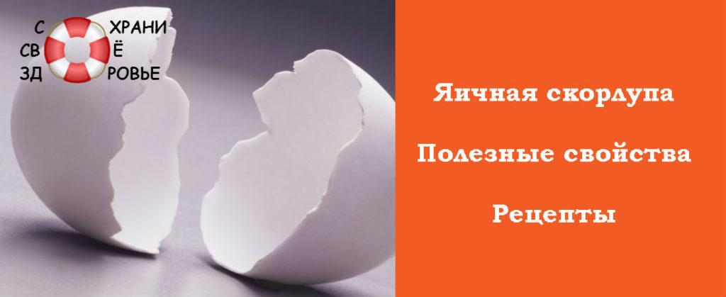 Фото яичной скорлупы