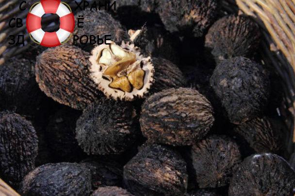 Чёрный орех: его польза и вред