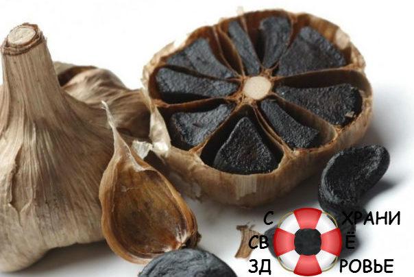 Чёрный чеснок: польза и вред, его применение и приготовление