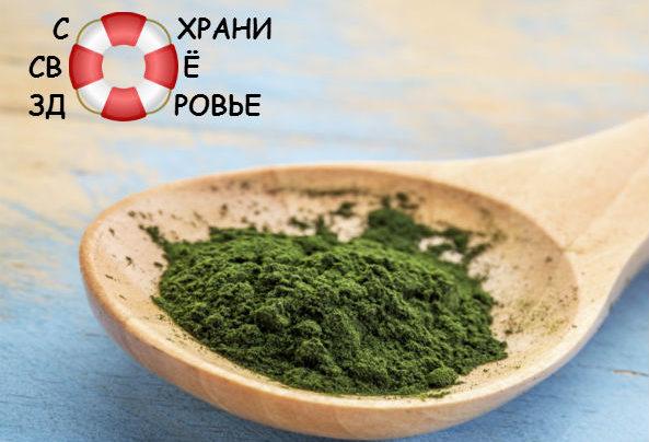 Хлорелла: полезные свойства и противопоказания зеленой водоросли