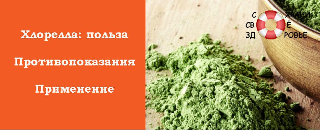 Хлорелла - полезные свойства и противопоказания, применение