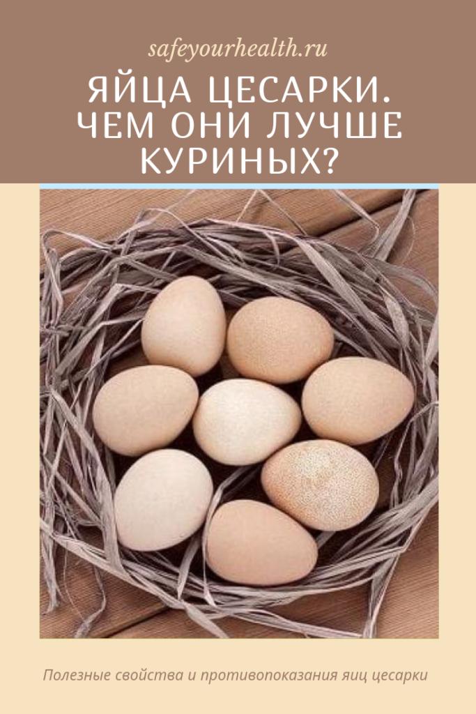 Яйца цесарки: польза и вред