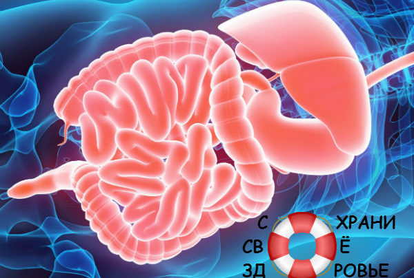 Синдром дырявого кишечника — причины, симптомы и лечение