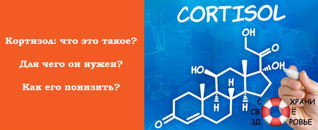 Кортизол и его особенности