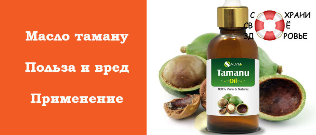 Полезные свойства масла таману